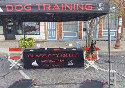 Dog training demonstration in Maumee Ohio.