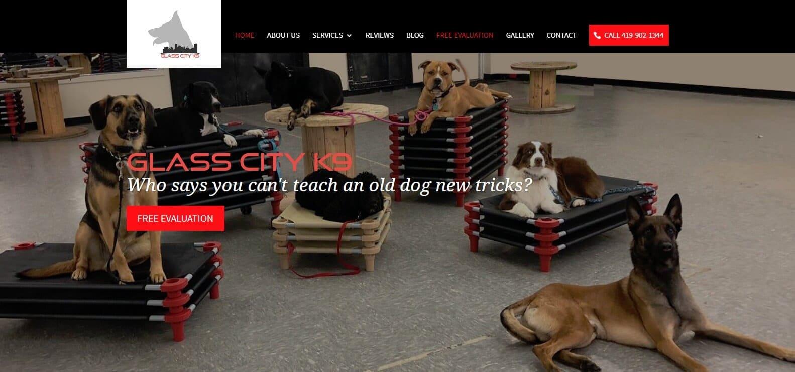 Toledo Dog Training | Puppy Training Toledo OH | Glass City